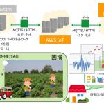農業IoT  センサーによる圃場 センシング